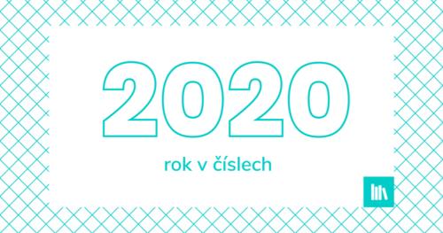 Rok 2020 v číslech